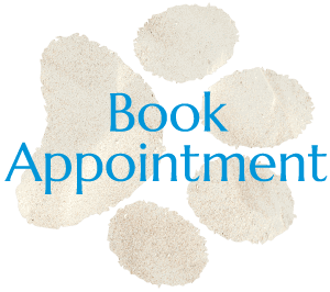 Book An Appointment With San Diego Veterinarian