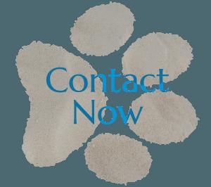 Contact San Diego Veterinarian