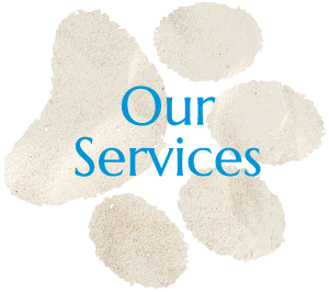 Veterinary Services In San Diego