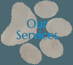 Vet Services In San Diego